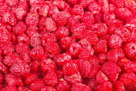 Many fresh red raspberry background