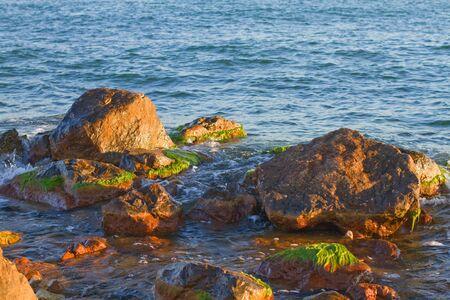 Sea water hitting the weed rocks.