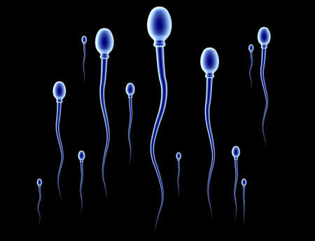 Sperm Race - black photo