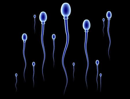 ovulation: Sperm Race - black Stock Photo