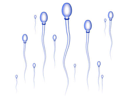 Sperm Race - white photo