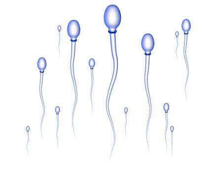 semen: Sperm Race - white