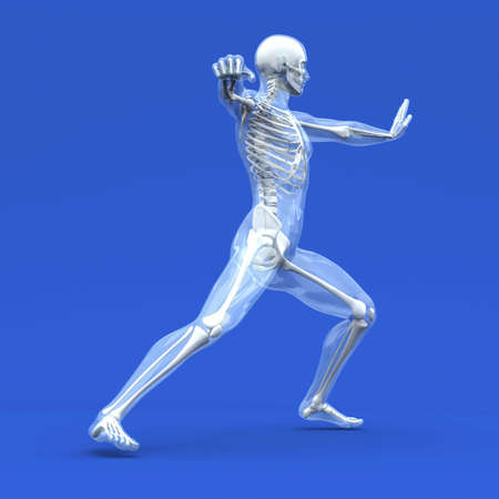 bones of the foot: 3D rendered Illustration.