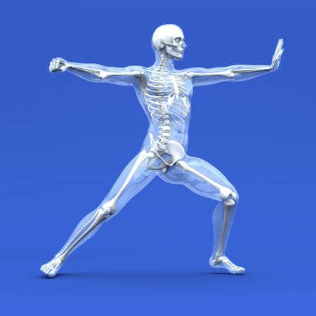 fisiologia: 3D representa la ilustraci�n.