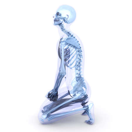 A male, human, translucent Body. Anatomy visualization. 3D rendered Illustration. Isolated on white.