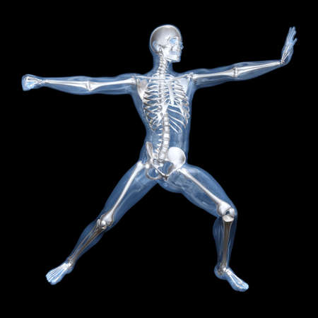 transparent male anatomy: A medical visualisation of human anatomy. 3D rendered Illustration.