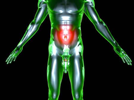 Medical Illustration. 3D rendered Illustration. Isolated on black. Stock Illustration - 9956109