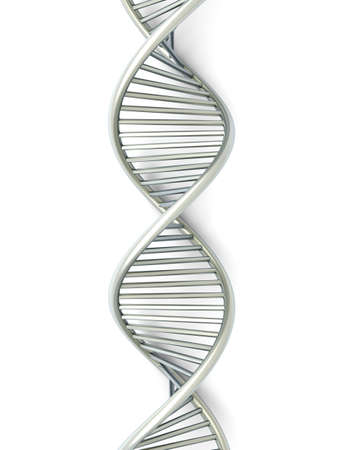 genes: Un modelo de ADN simb�lico. 3D rindi� la ilustraci�n. Aislado en blanco.