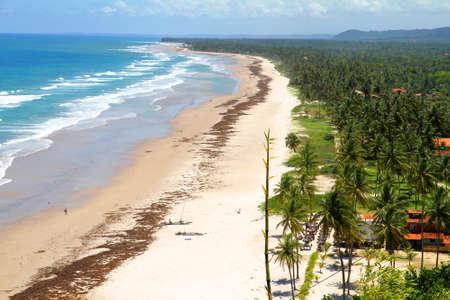 At the beach of Bahia, Brazil, South america. photo