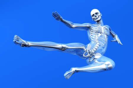 Une visualisation m�dicale de l'anatomie humaine. Illustration 3D rendu. photo