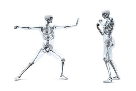 A medical visualisation of human anatomy. 3D rendered Illustration. Isolated on white. illustration