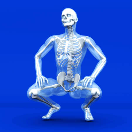 x ray skeleton: A medical visualization of human anatomy. 3D rendered Illustration.  Stock Photo