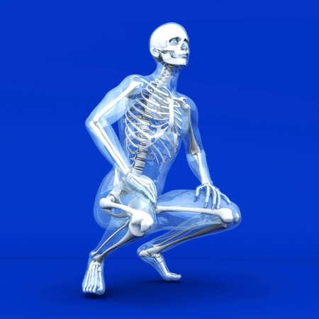 scheletro umano: Una visualizzazione medico di anatomia umana. 3D rendering illustrazione.