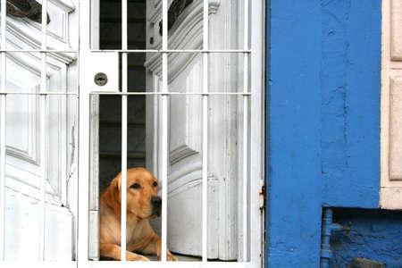 montevideo: Entrance of a house in Cordon, Montevideo, Uruguay.