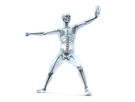 visualisation: A medical visualisation of human anatomy. 3D rendered Illustration. Isolated on white.