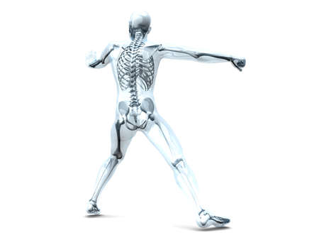 tibia: A medical visualisation of human anatomy  3D rendered Illustration  Isolated on white  Stock Photo