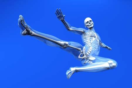 A medical visualisation of human anatomy  3D rendered Illustration  illustration