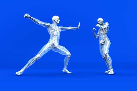 tibia: A medical visualisation of human anatomy  3D rendered Illustration