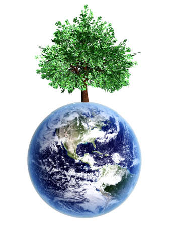 Symbol of environment and ecology  A world with trees  3D rendered Illustration