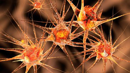 3D illustratie van neuronale cellen.