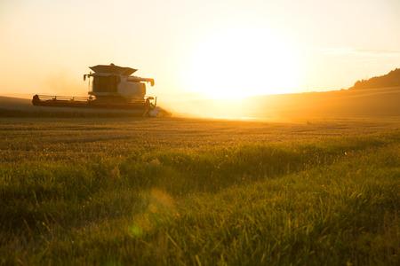 Een veld steeds geoogst door een landbouwmachine.