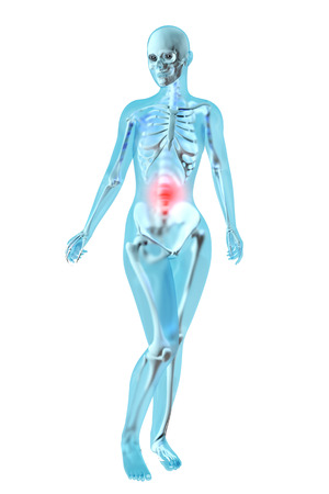 Female anatomy. Stomach ache and pain sensation. 3D illustration.