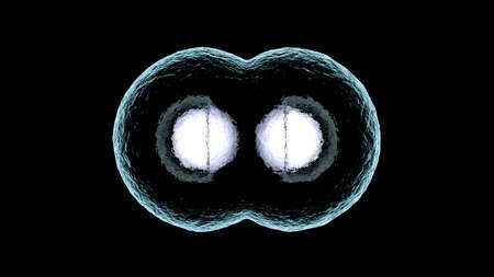 3D rendered illustration of Cell Replication Stock Illustration - 80110139