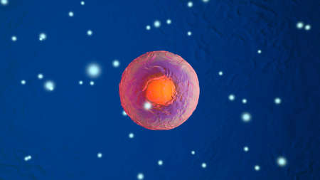 3D Illustration of Mitosis or cell division of biological stem cells.