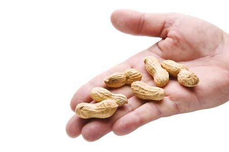 Human hand reaching out to give you some peanuts