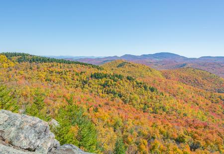 Trees Show Their True Colors Across A Mountainous Landscape Stock Photo