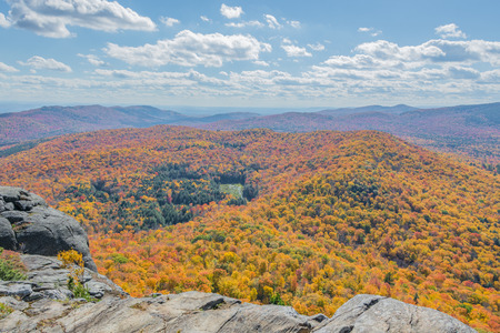 Fall Foliage View From The Ledge Of A Cliff