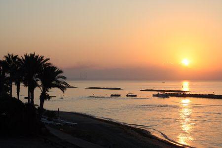 feigenbaum: Eine allgemeine Ansicht der Feigenbaum Strand im Ferienort Ayia Napa auf der Insel Zypern. Es ist hier bei Sonnenuntergang.
