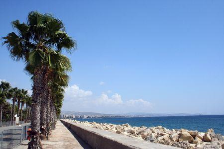 feigenbaum: Eine allgemeine Ansicht der Feigenbaum Strand im Urlaubsort Ayia Napa auf der Insel Zypern.