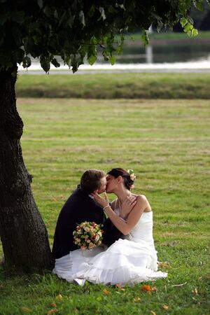 Newlywed couple kissing under tree in park outdoors Stock Photo - 2612649