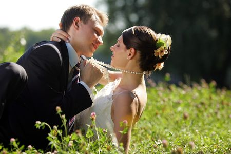 Newlywed couple kissing in field after wedding ceremony Stock Photo - 2612638