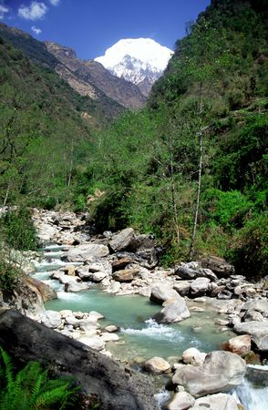 mountainside: A scenic view of country of Nepal showing mountain stream.