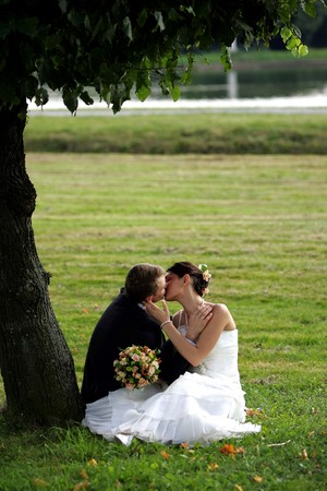 Newlywed couple in love kissing under tree on field in summer. photo