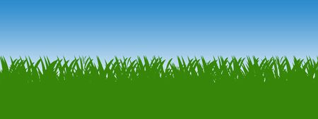 Green grass background with blue sky isolated over white. Stock Photo - 5164083