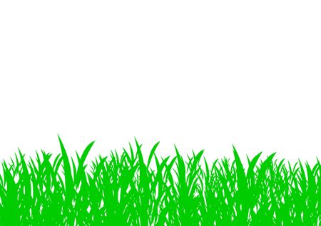 Field of grass isolated on white background. Stock Photo - 5164068