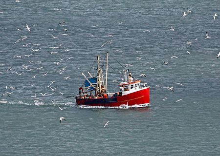 Flock of seagulls surrounding fishing trawler boat in ocean. photo