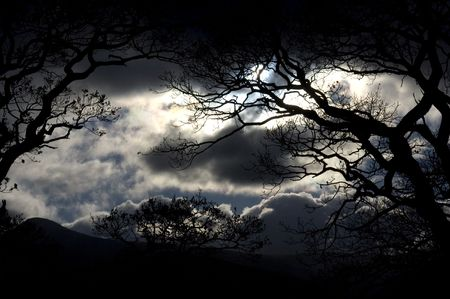 wintry landscape: Scenic view of storm clouds with silhouetted trees in foreground. Stock Photo