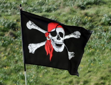 privateer: Skull and cross bones pirate flag with green grass background.