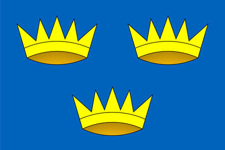 munster: Official Province of Munster flag in Ireland