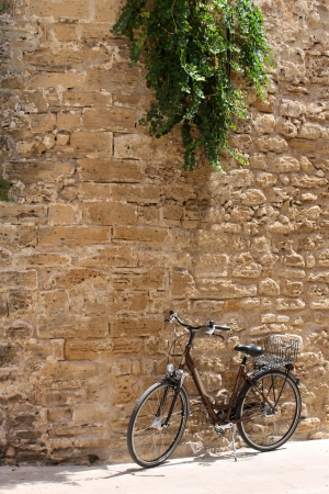parked bicycles: Bicycle leaning against old wall underneath green plant.