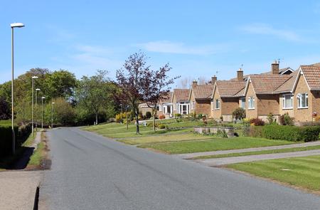 suburban street: Row of bungalow houses in English street, summer scene.