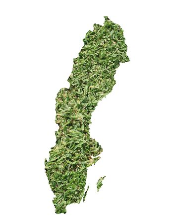 rural area: Map of Sweden filled with green grass, environmental and ecological concept.
