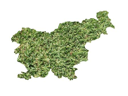 Map of Slovenia filled with green grass, environmental and ecological concept.