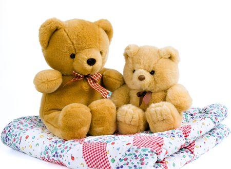 teddy bears: 2 osos de peluche sentado en una manta acolchada
