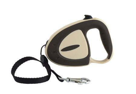 Extending retractable dog leash isolated on white