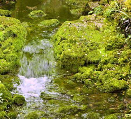 Small waterfall between two moss covered rocks